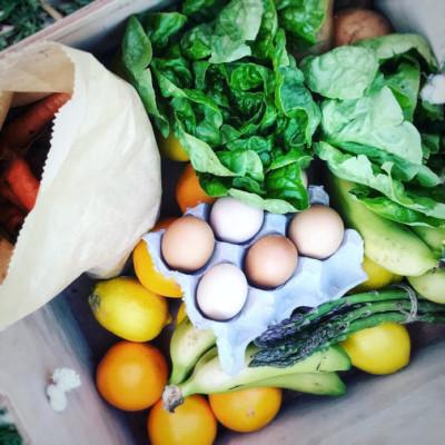 Organic-Urban-Food